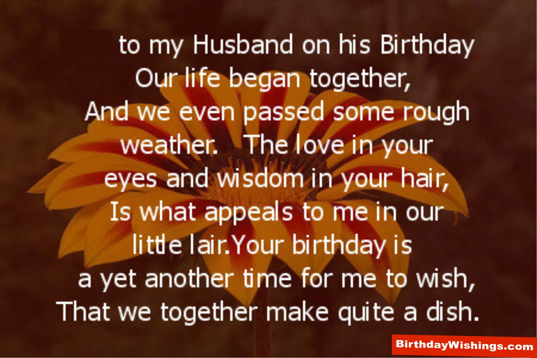 Birthday Poem For Husband