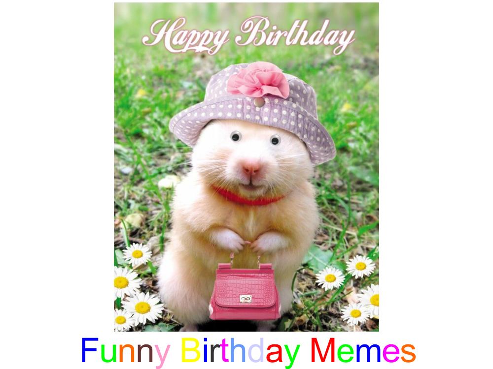 Top Funny Birthday Memes